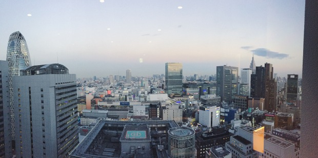 View from the Keio Plaza Hotel